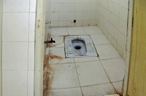 Eastern Toilet in India (Photo by Don Knebel)